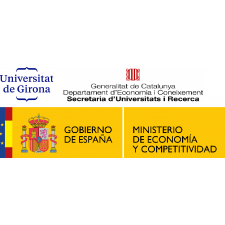 Preconvocatòria: Beques per a realitzar estudis doctorals